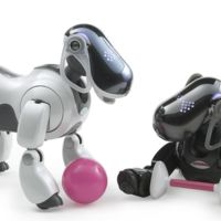 """Sony prepara un nuevo robot con el que estableceremos """"lazos emocionales"""""""