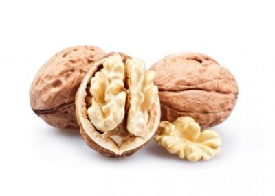 Las nueces podrían ayudar en la lucha contra el alzhéimer