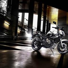 Foto 14 de 18 de la galería yamaha-xj6-otra-naked-para-2009 en Motorpasion Moto