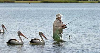 El Gobierno estimulará la jubilación tardía