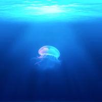Desde la Fosa Mariana hasta Neptuno: así suenan los lugares más inaccesibles