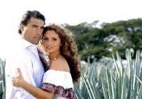 Destilando amor y Sin tetas no hay paraíso: más telenovelas para la sobremesa