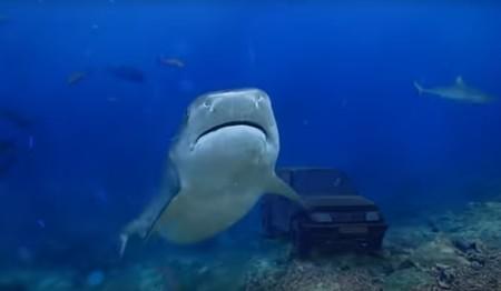 ¿El anuncio del año? Un particular 'sumerge' su Suzuki Vitara entre tiburones para venderlo