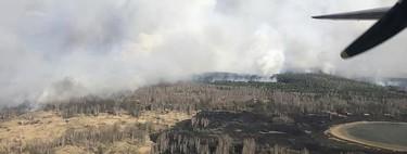 La radiación vuelve a subir en Chernóbil con niveles 16 veces superiores a los normales y es culpa de los incendios forestales