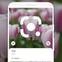 La nueva interfaz de Google Lens llega a todos los móviles con Assistant
