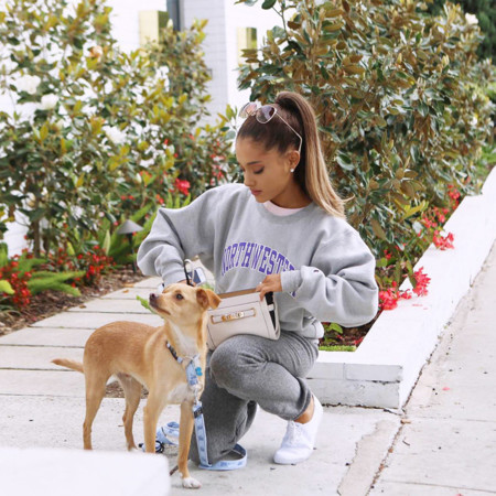 Ariana Grande y Toulouse