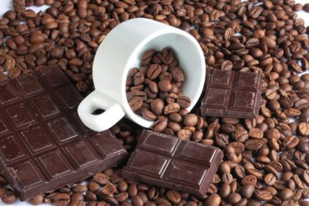 Resultado de imagem para cafeina no chocolate