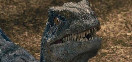 'Jurassic World 3' ya está en marcha: la trilogía llegará a su fin en 2021