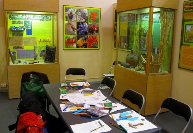 Museo biodiversidad Ibi Alicante