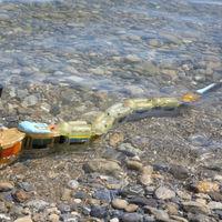 Esta anguila robótica seriá para detectar contaminación acuática