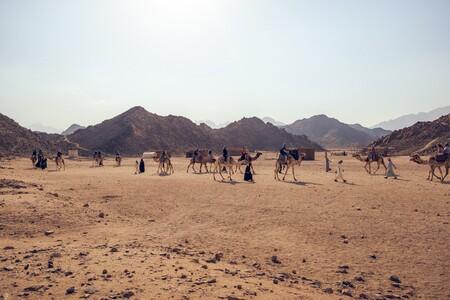 Aldea beduina en el desierto del Sahara.