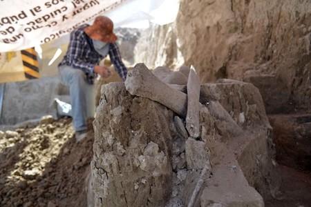 Alguien encontró restos de mamuts en Tultepec, México, en una zona destinada a ser basurero