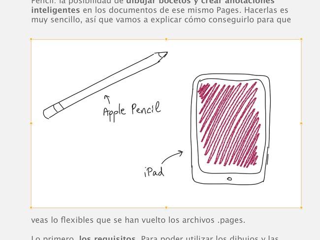 Ipad Pages Iwork Dibujos Detalle