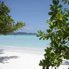 Foto 7 de 9 de la galería seychelles en Trendencias