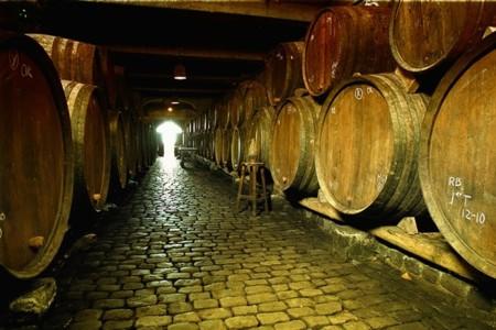 No seas el hortera que se va a Punta Cana a hotel de pulserita: vete a hacer la ruta del vino a Tenerife