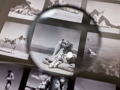 'Magnum, Hojas de contacto', la exposición que nos cuenta cómo hacer una fotografía