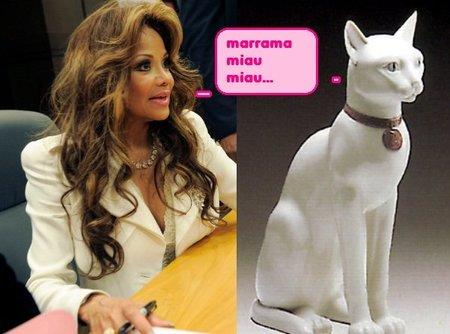 Separados al nacer: La Toya Jackson y el Gato de de Escayola