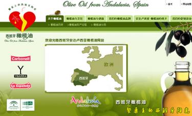Oil from Andalucía, Spain. Primera web en chino dedicada al mundo del aceite español