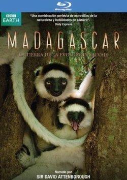 madagascar-bbc-blu-ray