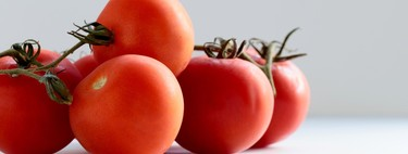 Todo lo que hemos investigado en ingeniería genética tendrá sentido si, de verdad, consiguen un tomate que sepa a tomate