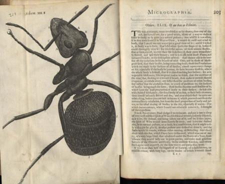 El libro sobre criaturas extrañas que hace cuatro siglos no suscitó interés