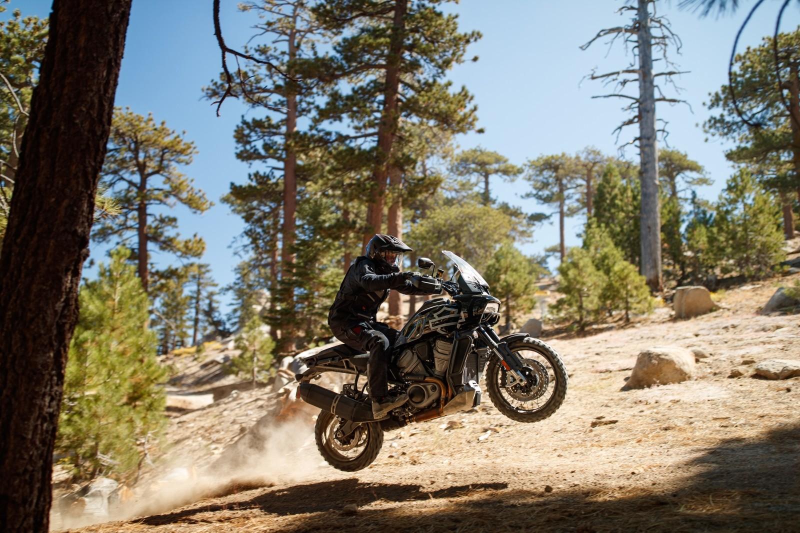 Foto de Harley-Davidson Pan America 2020 (11/15)