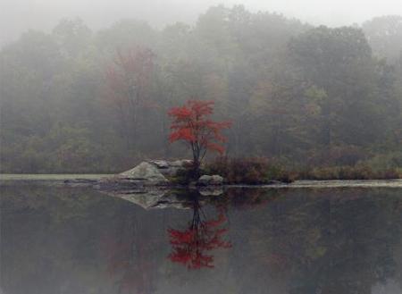 otoño4