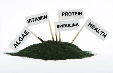 ¿Conoces la espirulina y su aporte proteico?