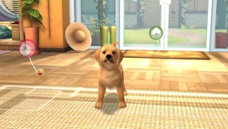 El videojuego Pets disponible para PSVita y también en los dispositivos móviles