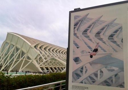 Un recorrido fotográfico por el Umbracle en la Ciudad de las Artes y las Ciencias, Valencia