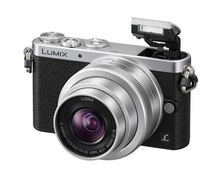 Lumix GM1 negra plata