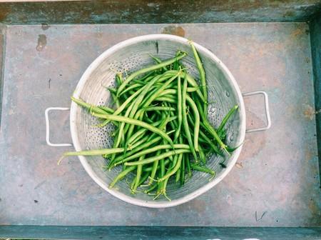 Siete ideas para cocinar con judías verdes ahora que vas a encontrar las mejores en tu mercado