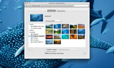Cómo acceder a 38 fantásticos fondos de escritorio ocultos en OS X Mountain Lion