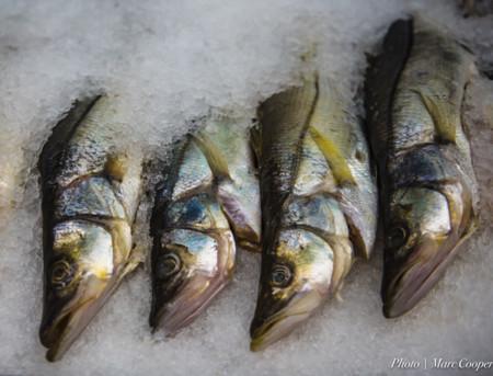 Todo lo que necesitas saber para cocinar un buen pescado - Cocinar pescado congelado ...