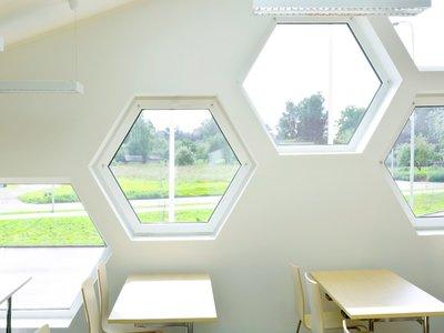 Tipos de ventanas para hacer tu vivienda más cálida, acogedora y con ahorro energético
