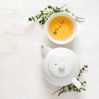 Un antioxidante que se encuentra en el té verde puede aumentar los niveles de p53, una proteína natural contra el cáncer