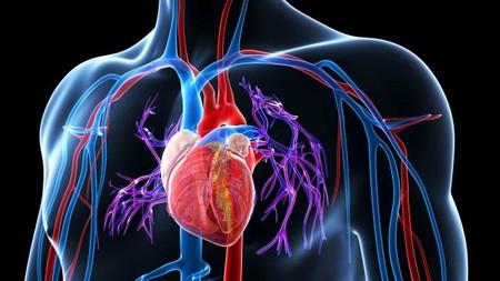 La inteligencia artificial puede predecir tu próximo infarto