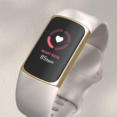 Fitbit 240458029 846988959300109 7846460781278597066 N