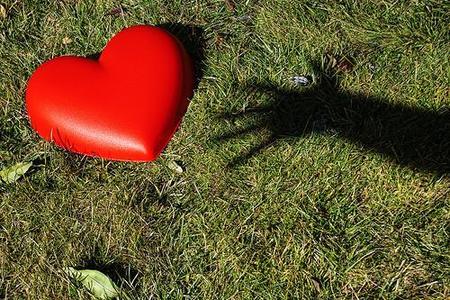 Las 7 sustancias químicas que dan forma al amor