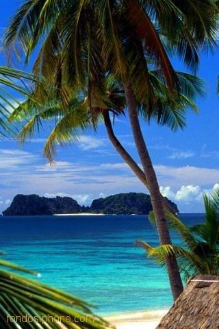 isla-paraiso-1.jpeg