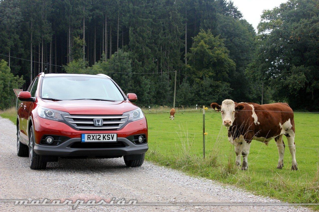 Foto de Honda CR-V 2012 (17/70)
