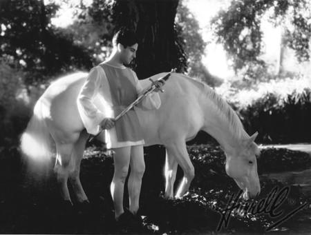 Ramon Horse Wm3