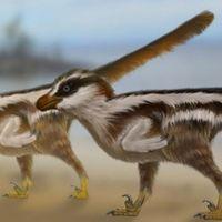 Las huellas más pequeñas de un dinosaurio correspondían a una criatura del tamaño de un gorrión