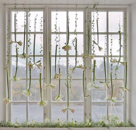 Viste tu ventana de primavera con una cortina de flores