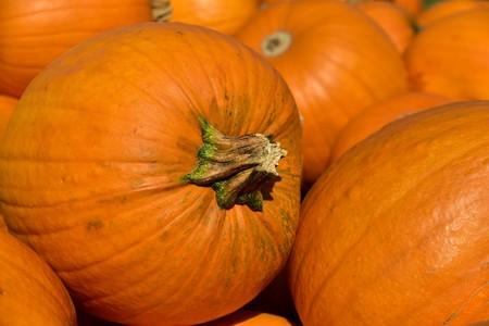 Pumpkin 3636243 1280 1