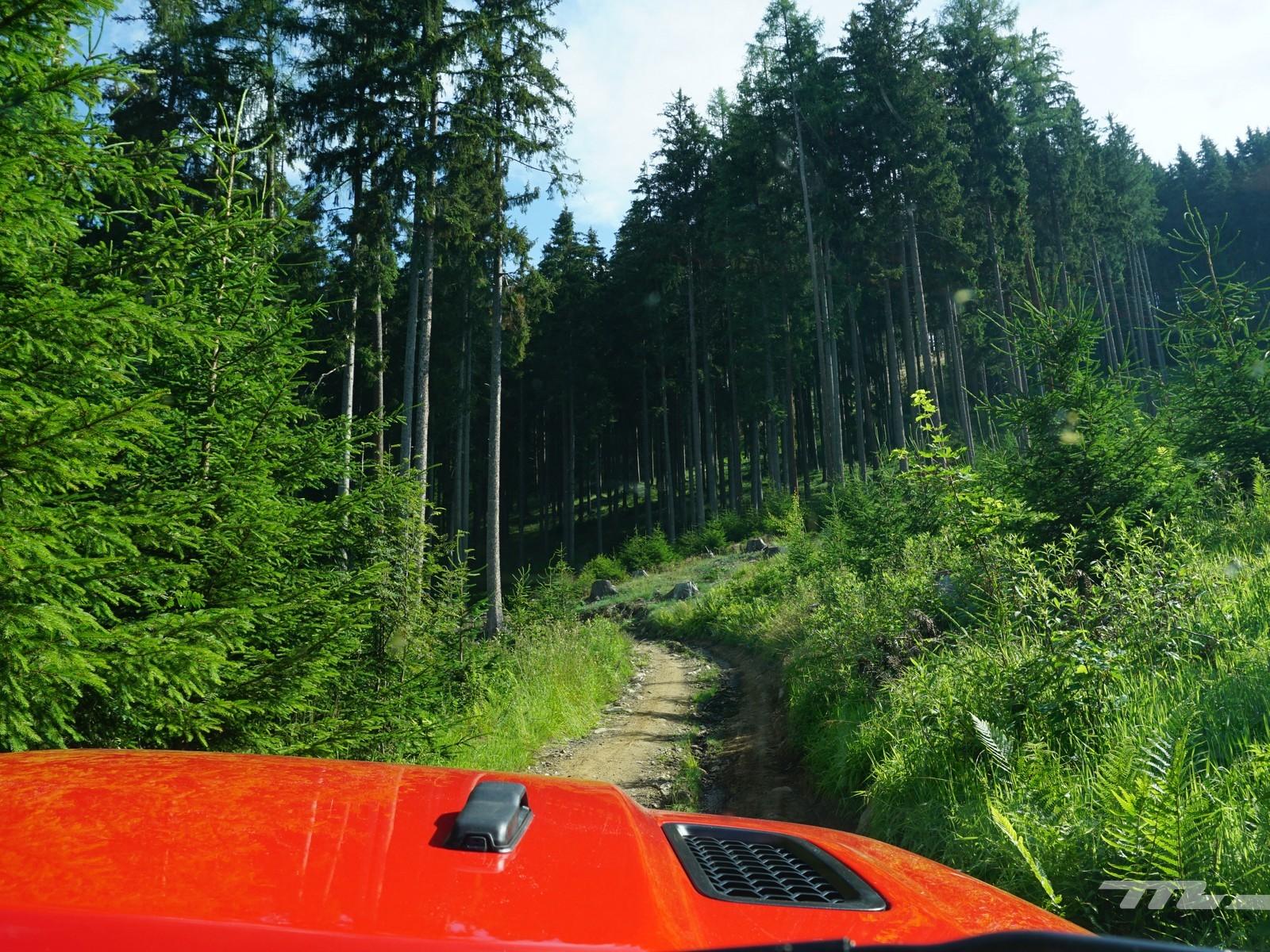 Foto de Jeep Camp (10/35)
