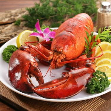 Se levanta la veda de langostas en el Golfo de México y mar Caribe, ya puedes disfrutar de este manjar