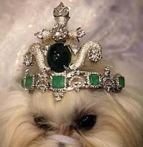 Cómo las esmeraldas de una madre acaban en una tiara para el perro