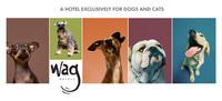 Wag Hotels: hoteles de lujo para perros y gatos