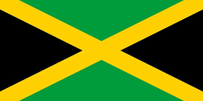 Bandera verde blanca y negra